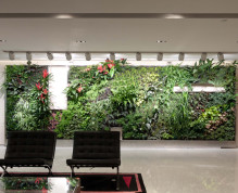 Ronald_Lu_&_Partners_Green_Wall